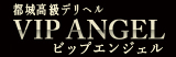 VIP ANGEL ~ビップエンジェル~